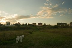 2005-09-04_19-41-31 Canon EOS 20D.jpg